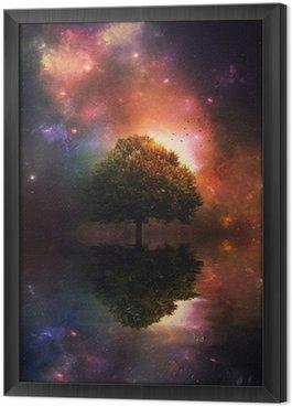 Nocne niebo i drzewa