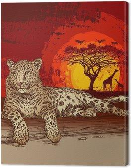 Leopard o zachodzie słońca