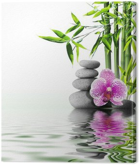 purple orchid flower end bamboo on water