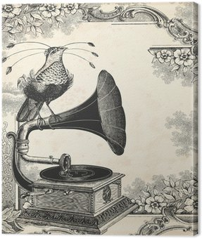 Muzyka ptaka
