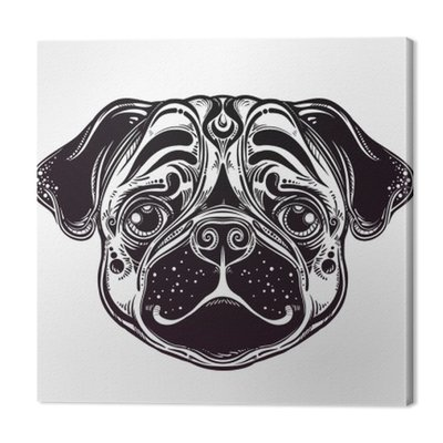 Linear style Illustration of a pug dog face.