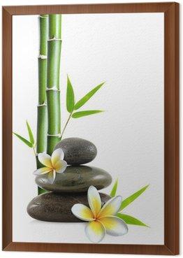 Frangipani kwiaty, Zen kamienie i bambusa