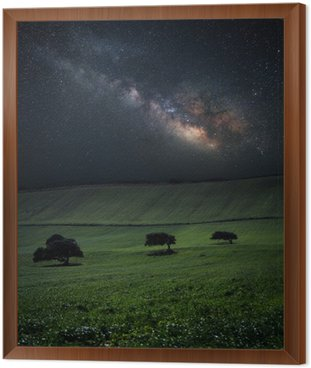 Night with amazing milky way over green field with three trees