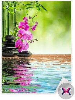 Różowa orchidea i bambusa czarny kamień na wodzie
