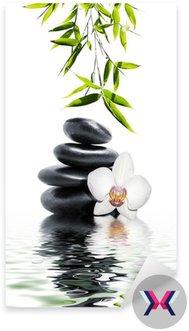 Biała orchidea kwiat bambusa końca