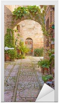Ulica z kamienny łuk ozdobiony roślinami (Spello)
