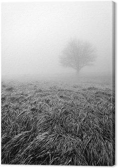 Samotny i samotny, drzewo, w czerni i bieli