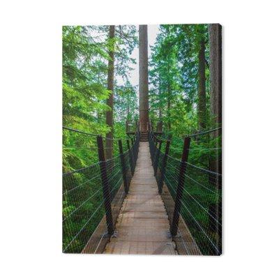 Wierzchołek Most wiszący w Capilano Park, British Columbia