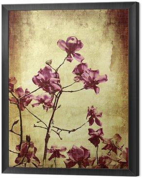 Piękne grunge tła z magnolii