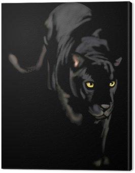 Czarna pantera nocy