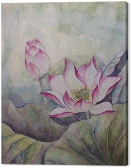 Piękny kwitnący lotos
