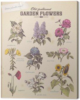 Kwiaciarnia afisz z 9 klasycznych kwiatów ogrodowych