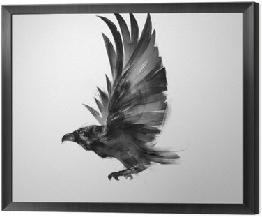 isolated graphically flying bird black crow