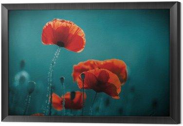 Obraz v Rámu Květy a rostliny