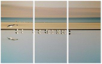 Vogelschwarm in Reihe / Ein kleiner Vogelschwarm in Reihe stehender Möwen einer Brutkolonie am Saltonsee in Kalifornien.
