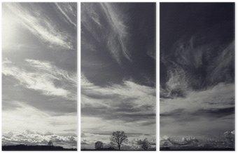 Czarno-białe zdjęcie krajobrazu jesienią