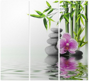 Fioletowy kwiat orchidei bambusa na koniec wodą