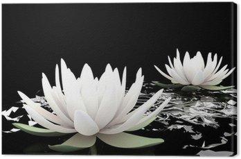 3d lotosu na wodzie
