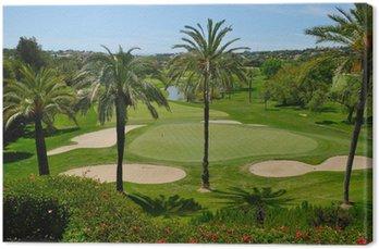 Golf course in Marbella Golf valley
