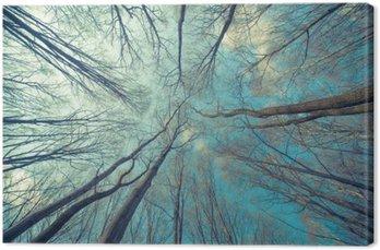 Trees Web Background