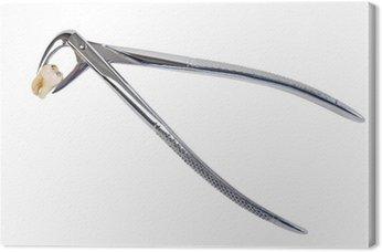 Wydobywanie i stomatologicznych zębów kleszcze