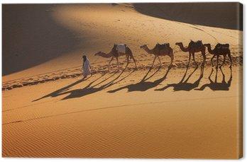 Sahara, Camel Ride pole, a szczęśliwi ludzie cieszący