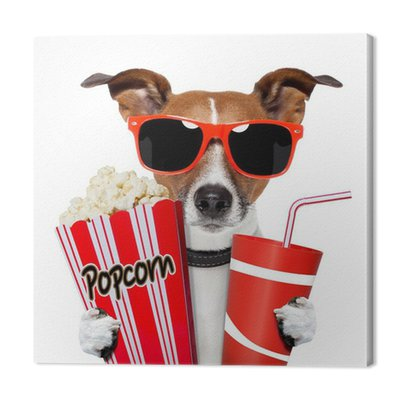 Pies oglądania filmu