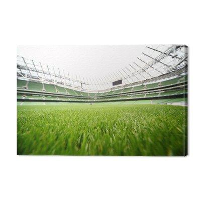 Green-cut grass w dużym stadionie przy letni dzień