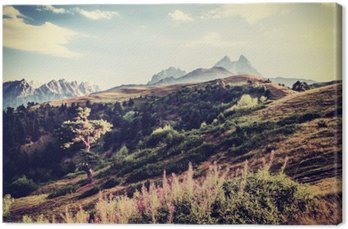 Vintage Valley and Mountains