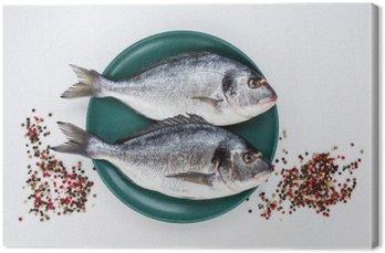 Surowe ryby dorado na żółty talerz z pieprzu na białym stole. Widok z góry, kopia przestrzeń