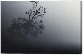 Uczęszczając Drzewo Dark Night ./Halloween tła.