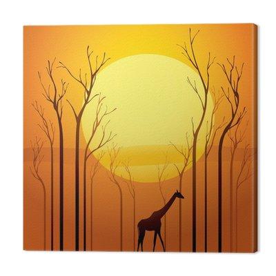 Suszone drzewa w zachodzie słońca