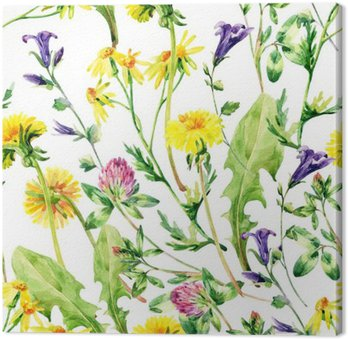 Łąka akwarela dzikie kwiaty szwu