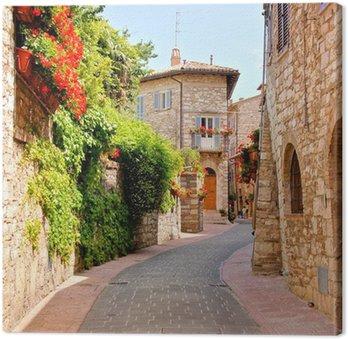 Kwiat pokryte ulicy w mieście Asyż, Włochy