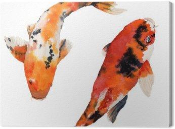 Akwarela orientalne tęczy karpia ustawiony. Koi ryby samodzielnie na białym tle. Podwodne ilustracji do projektowania, tła lub tkaniny