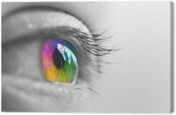 Profil oko, wielokolorowe tęczówki