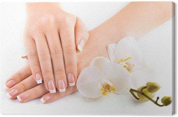 Piękny francuski manicure z białego orchidea na białym