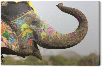Słoń na festiwalu słonia w Jaipur