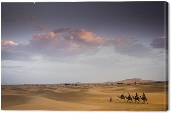 Pole na pustyni