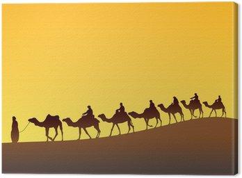 Sahara scenic i caravan