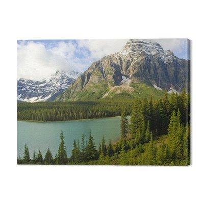 Bow Lake, Banff, Alberta, park narodowy