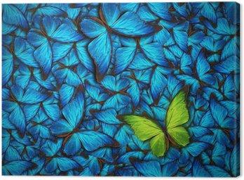 Piękny motyl w tle