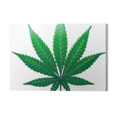 Marihuana Marihuana Marihuana Leaf - Foglia - Vector