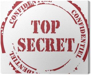 "Tampon ""Top Secret"""