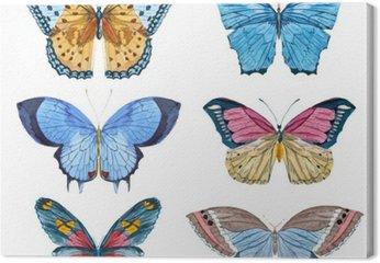 Motyle Akwarela wektor