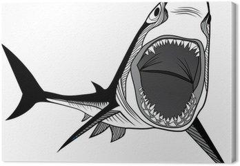 Shark głowa ryby