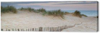 Panorama krajobraz systemu wydmy na plaży o wschodzie słońca