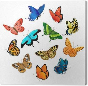 Latajace motyle