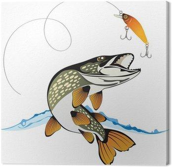 Przynęta Pike i rybołówstwa z wody powitalny samodzielnie na białym tyłu