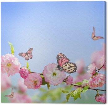 Różowy kwiat orientalny wiśni i motyla;